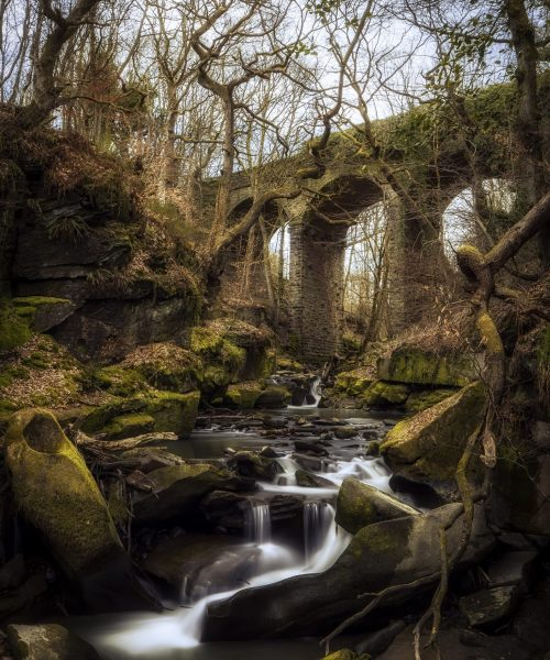 Healey Dell by Justin Moses - Canon 6d