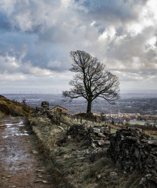 Holcombe Hill in Winter by Bernard Johnson - Nikon D610m